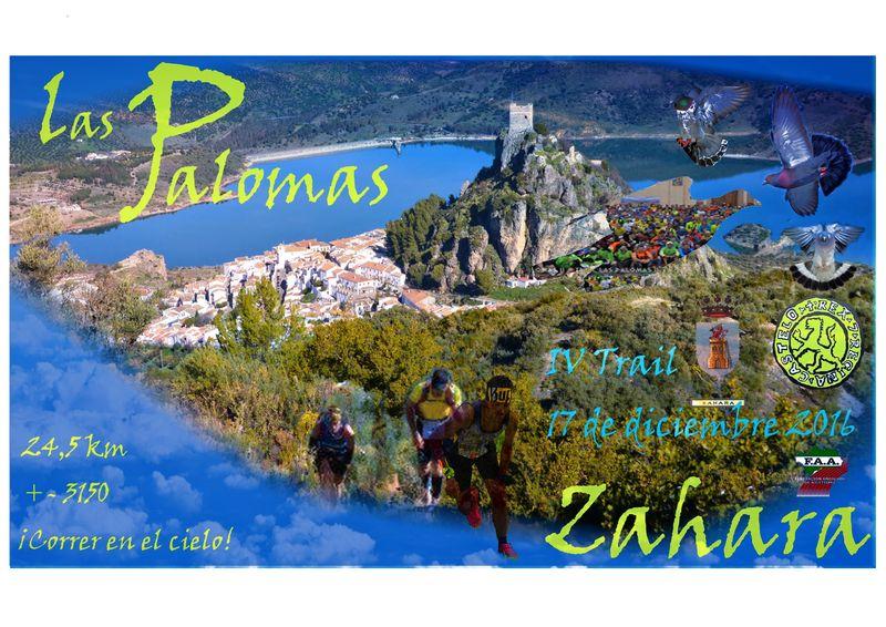 IV Trail Las Palomas
