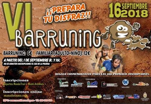 VI Barruning