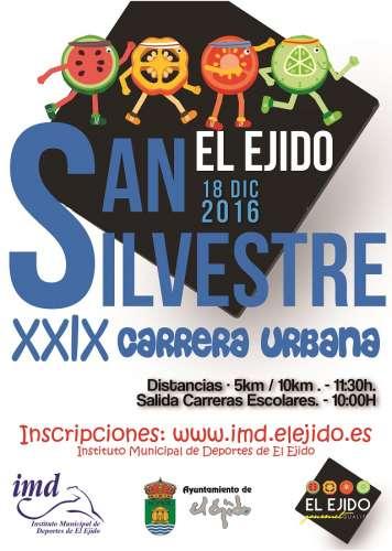 XXIX Carrera Urbana San  Silvestre